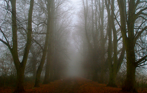 Top 10 Most Haunted Places in Pennsylvania - Photo