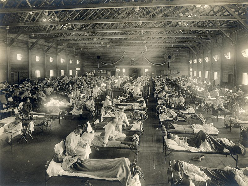 The Spanish Flu: The Facts, Figures, and Skeletons - Photo