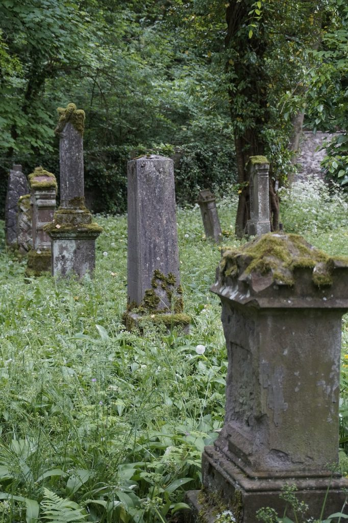 photo shows a group of mossy tombstones