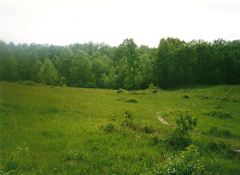 photo shows a large grassy field in gettysburg